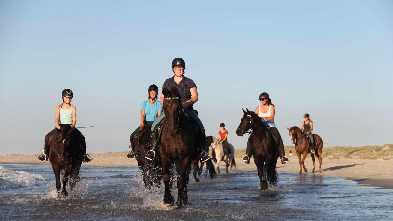 Met de paarden over het strand.